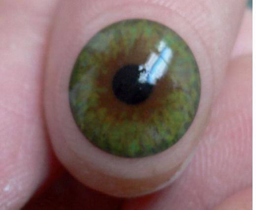 lentille souple hydrophile à iris peint et pupille noire